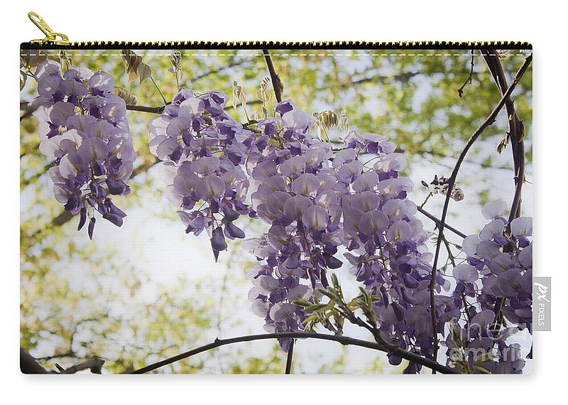 Wisteria Carry-all Pouch featuring the photograph Wisteria Row by Teresa Mucha