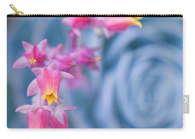 Aloha Carry-all Pouch featuring the photograph with affection - Echeveria glauca by Sharon Mau