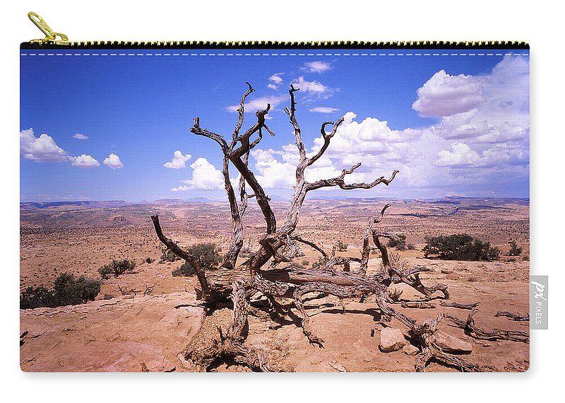 Tree Carry-all Pouch featuring the photograph Withered Tree Paria Canyon by Rich Franco