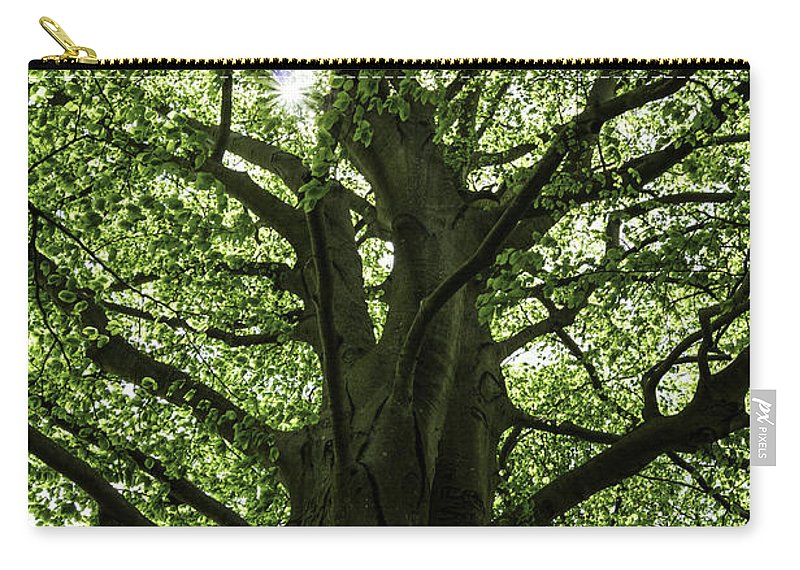 Tree Carry-all Pouch featuring the photograph Witness Tree by Joe Geraci