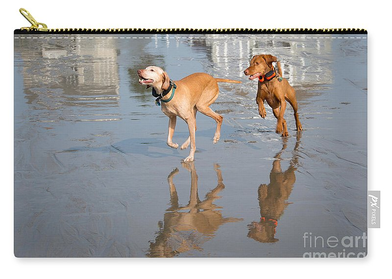 Dog Carry-all Pouch featuring the photograph Woo Hoo - It's A Beach Day by Mary Koenig Godfrey