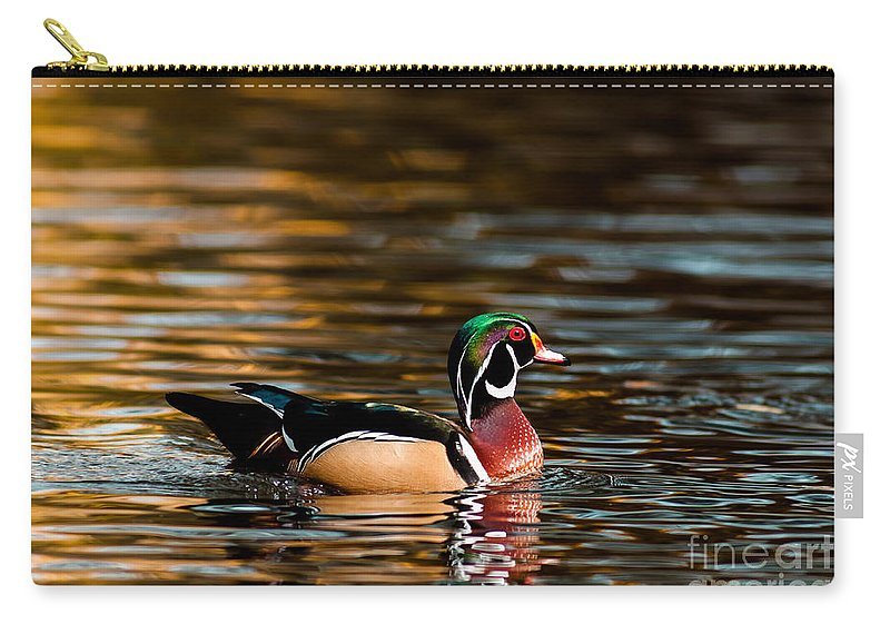 Animal Carry-all Pouch featuring the photograph Wood Duck At Morning by Robert Frederick