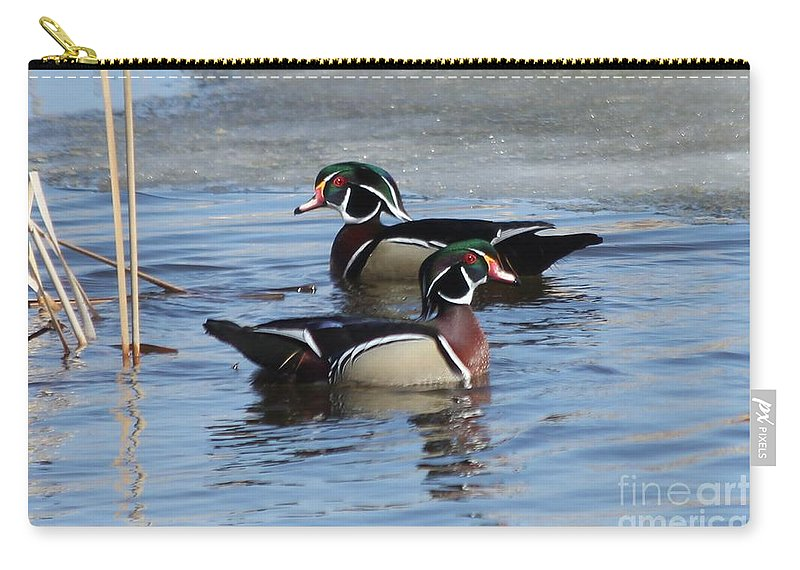 Wood Duck Carry-all Pouch featuring the photograph Wood Duck Drake Pair by Lori Tordsen