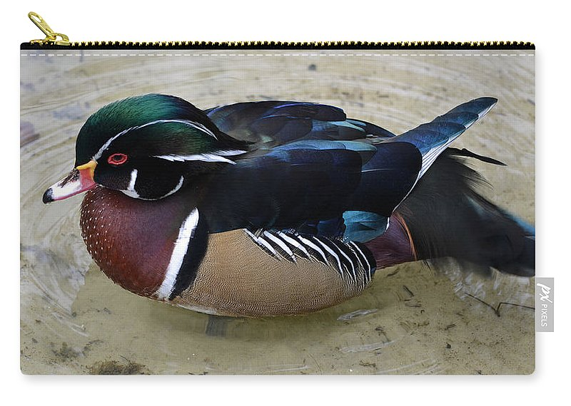 Wood Duck Carry-all Pouch featuring the photograph Wood Duck by Richard Bryce and Family
