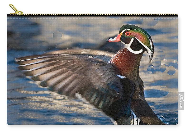 Wood Carry-all Pouch featuring the photograph Wood Duck by Ronald Lutz