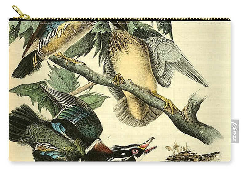 Wood Carry-all Pouch featuring the painting Wood Ducks by Philip Ralley