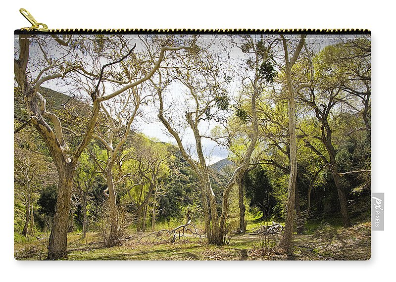 Art Carry-all Pouch featuring the photograph Woodland Glen In The California Vallecito Mountains by Randall Nyhof
