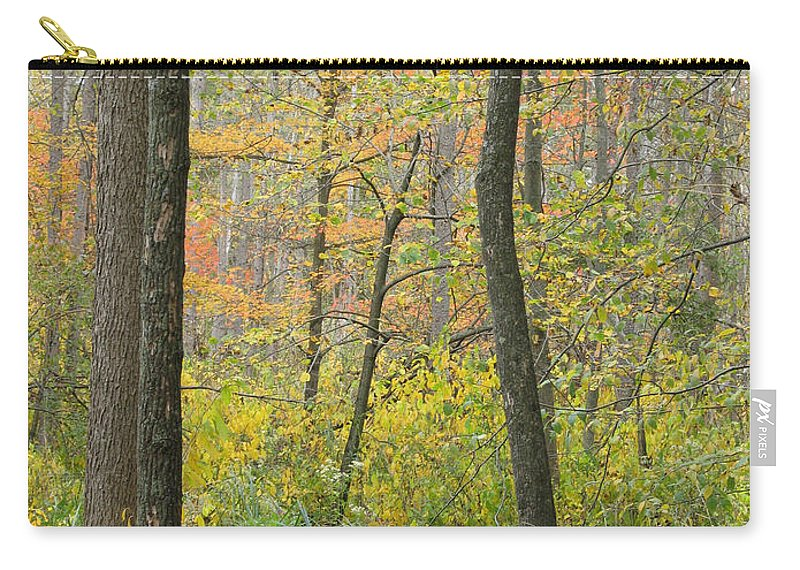 Autumn Carry-all Pouch featuring the photograph Woodland Interior by Ann Horn