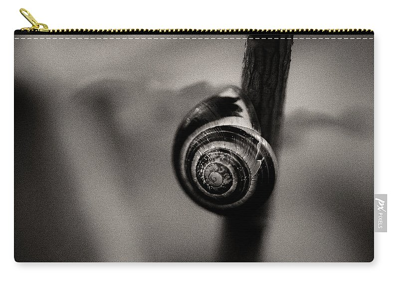 Snail On A Branch Carry-all Pouch featuring the photograph Woodland - Study 11 by Dave Bowman
