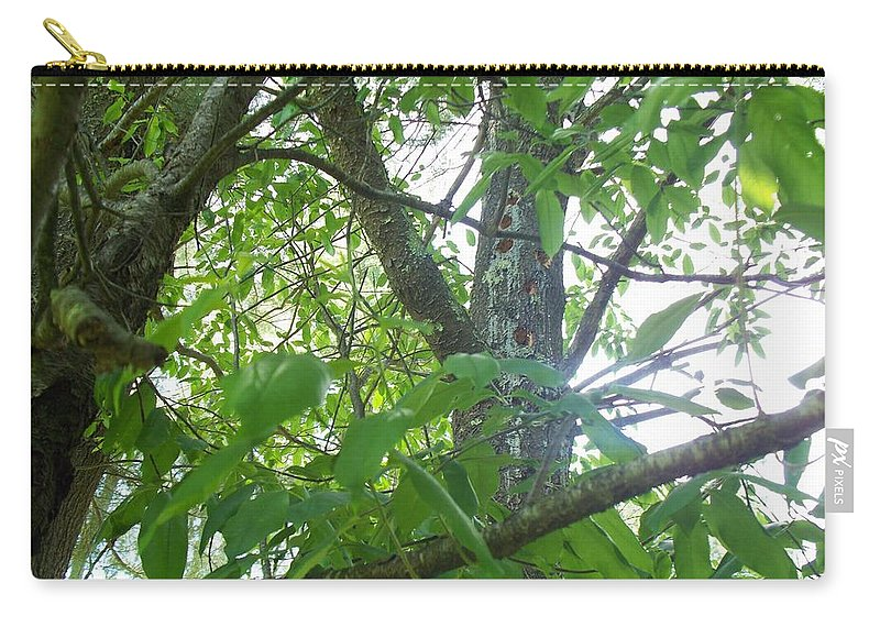 Trees Carry-all Pouch featuring the photograph Woodpecker Tree Art by Lisa Wormell