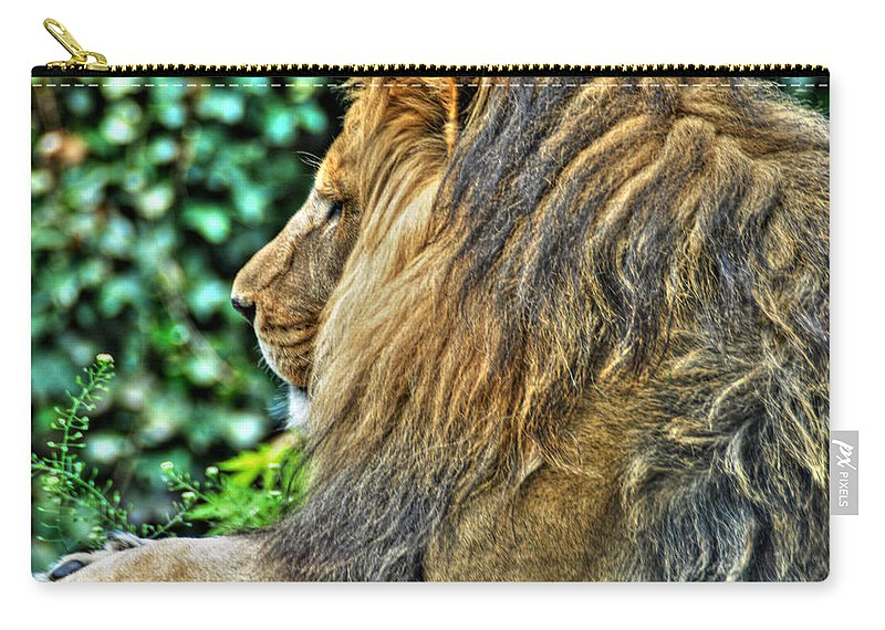 Lion Carry-all Pouch featuring the photograph Woolly Mane Of The King  by Michael Frank Jr