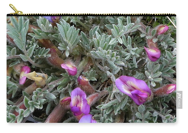Carry-all Pouch featuring the photograph Woolly-pod Locoweed Closeup by Carol Groenen