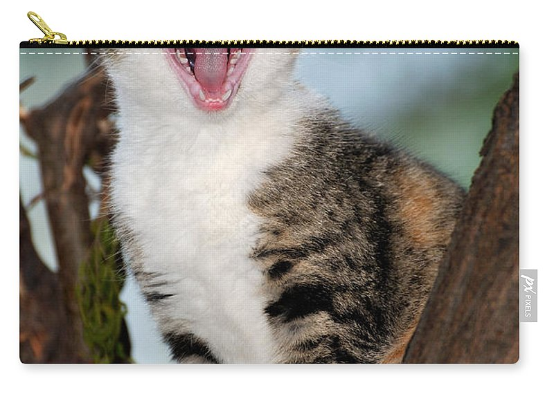 Cat Carry-all Pouch featuring the photograph Yawning Cat by George Atsametakis