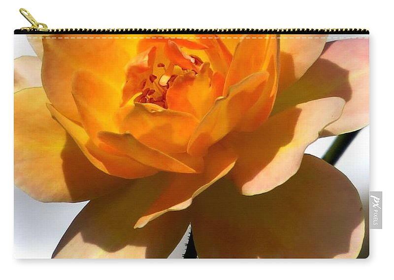 Rose Carry-all Pouch featuring the photograph Yellow And White Rose by Zina Stromberg