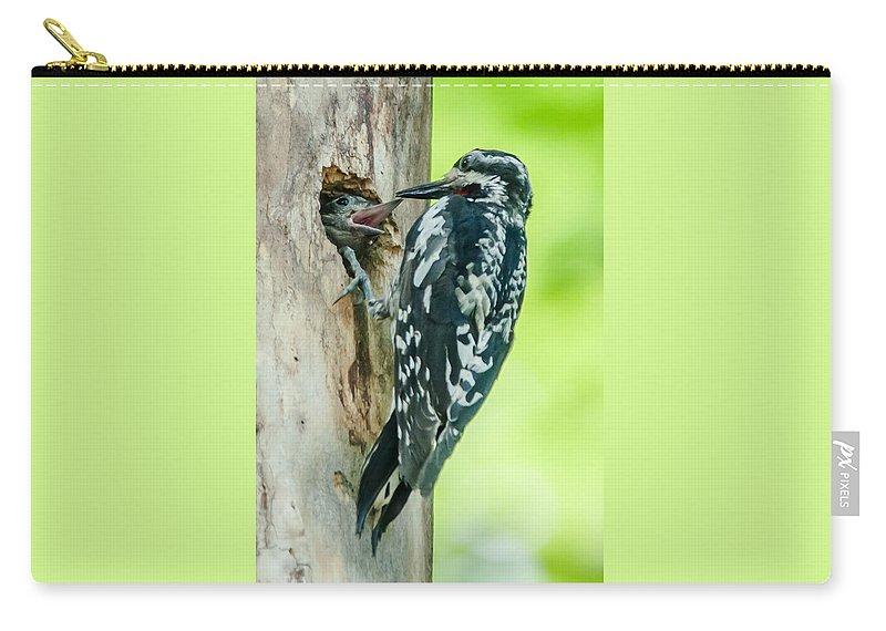 Bird Carry-all Pouch featuring the photograph Yellow-bellied Sapsucker Feeding by Richard Kitchen