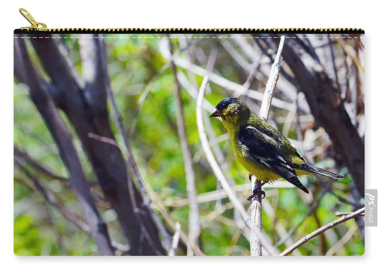 Bird Carry-all Pouch featuring the photograph Yellow Bird by Brent Dolliver