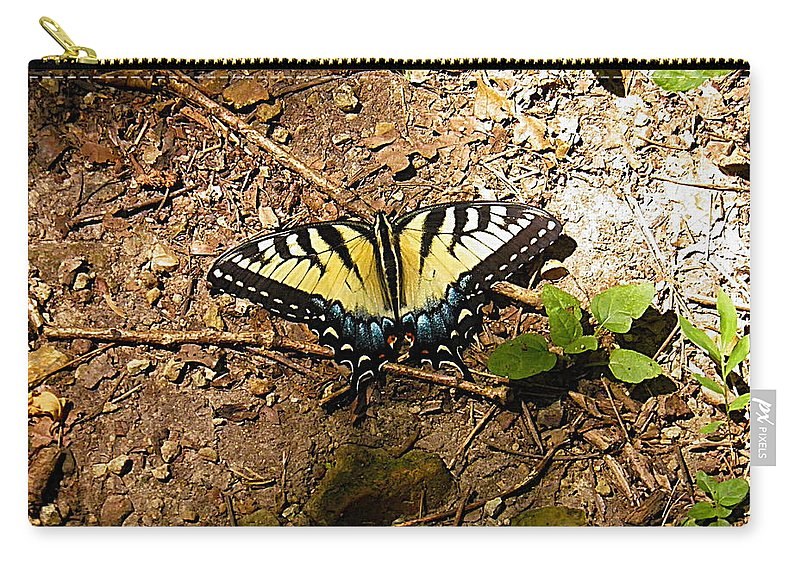 Butterfly Carry-all Pouch featuring the photograph Yellow Butterfly by Nick Kirby