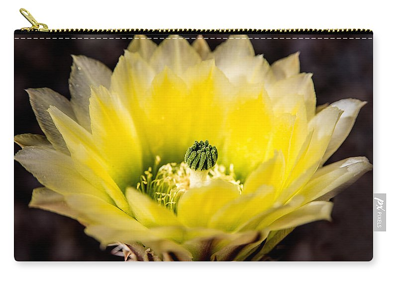 Yellow Flower Carry-all Pouch featuring the photograph Yellow Cactus Flower by Onyonet Photo Studios