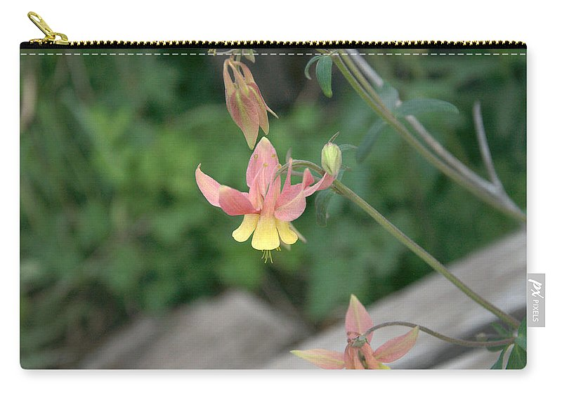 Yellow Carry-all Pouch featuring the photograph Yellow Columbine 2 by Frank Madia