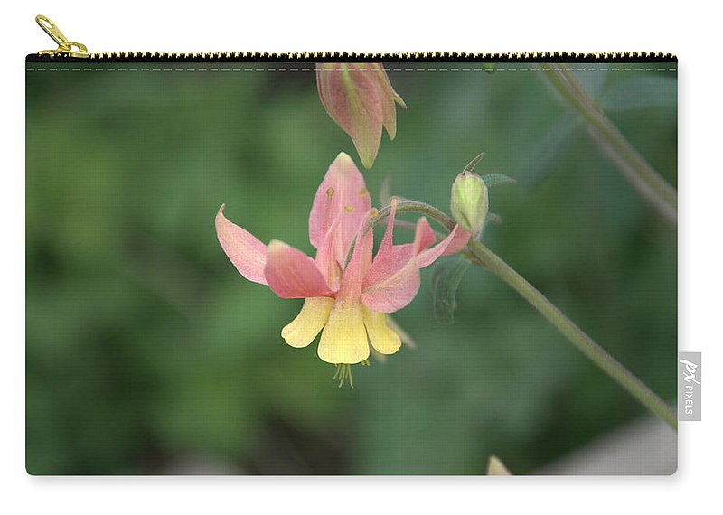 Flower Carry-all Pouch featuring the photograph Yellow Columbine by Frank Madia