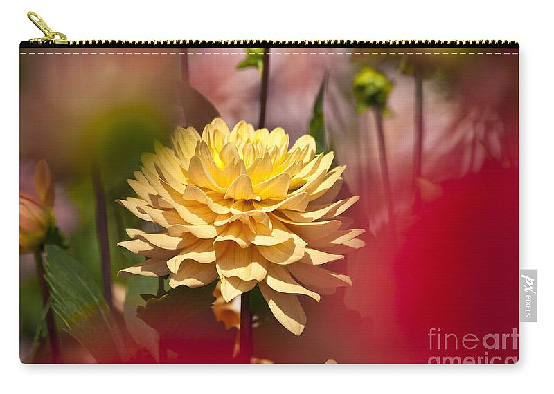 Heiko Carry-all Pouch featuring the photograph Yellow Dahlia 2 by Heiko Koehrer-Wagner