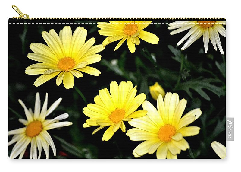 Yellow Carry-all Pouch featuring the photograph Yellow Daisies by Tara Potts