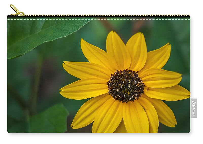 Florida Carry-all Pouch featuring the photograph Yellow Daisy by Jane Luxton