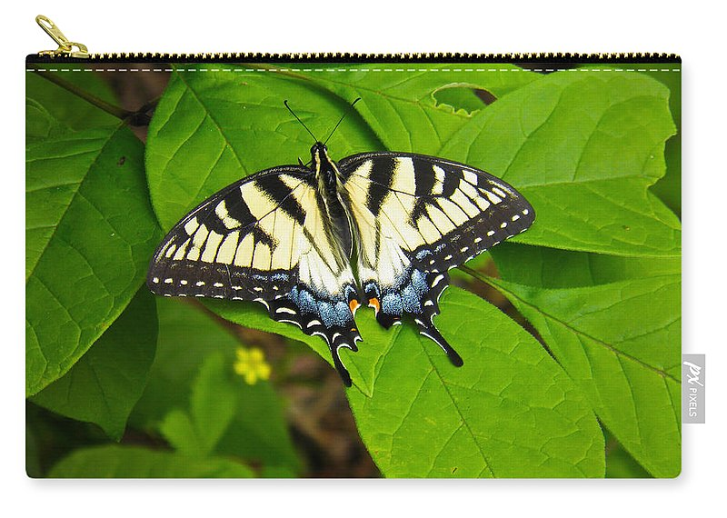 Yellow Carry-all Pouch featuring the photograph Yellow Fellow by Nick Kirby