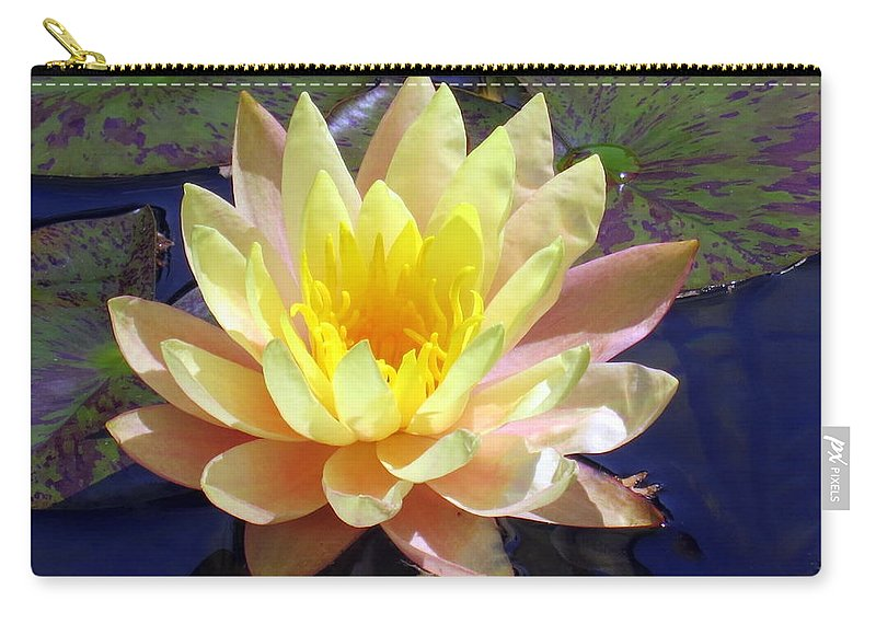 Water Lily Carry-all Pouch featuring the photograph Yellow Hardy Water Lily by Lena Photo Art