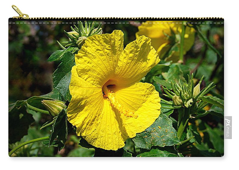 Hawaii State Flower Carry-all Pouch featuring the photograph Yellow Hibiscus Hawaii State Flower by Catherine Sherman