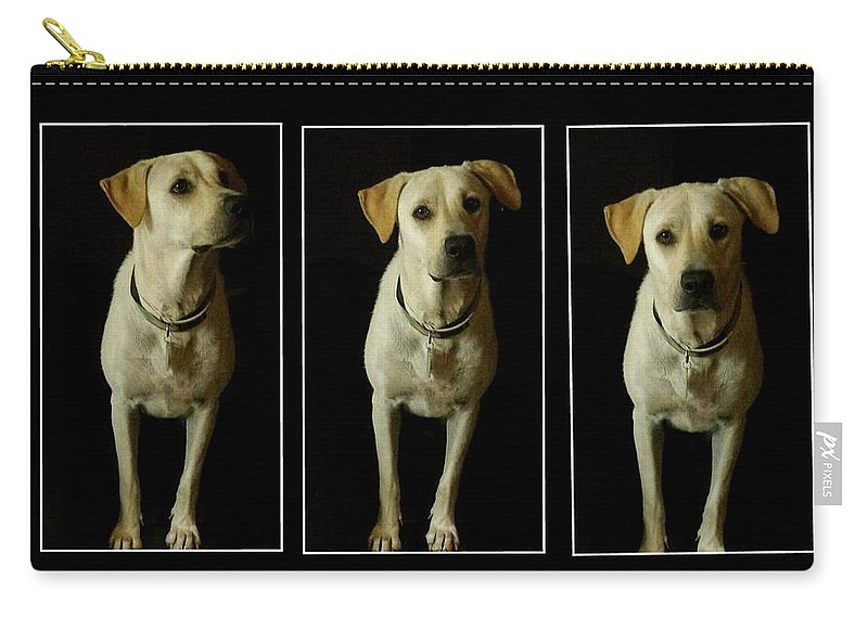 Pet Carry-all Pouch featuring the photograph Yellow Lab Love by Marisela Mungia
