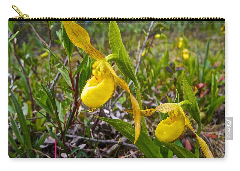 Yellow Lady Slippers Along Emerald Lake Trail In Yoho Np Carry-all Pouch featuring the photograph Yellow Lady Slippers Along Emerald Lake Trail In Yoho Np-bc by Ruth Hager