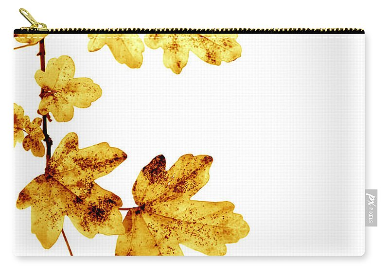 Autumn Carry-all Pouch featuring the photograph Yellow Leaves by TouTouke A Y