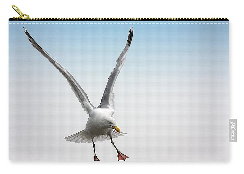 Image Carry-all Pouch featuring the photograph Yellow-legged Gull by Jan Brons