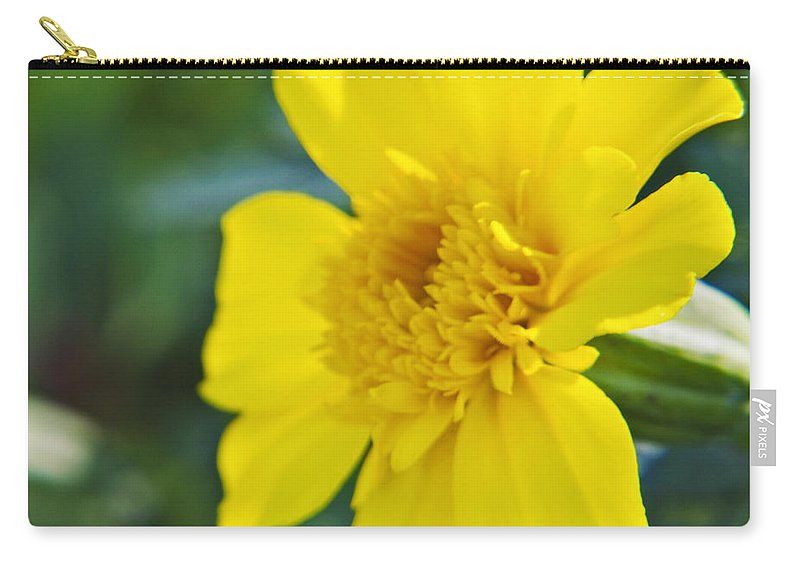 Marigold Carry-all Pouch featuring the photograph Yellow Marigold by Walter Herrit