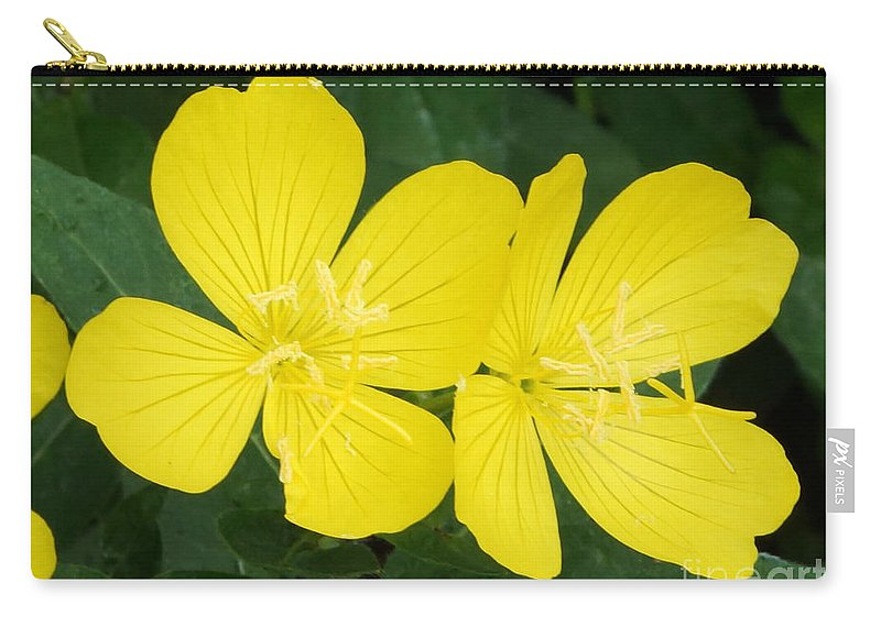 Yellow Carry-all Pouch featuring the photograph Yellow Primrose by Lori Tordsen