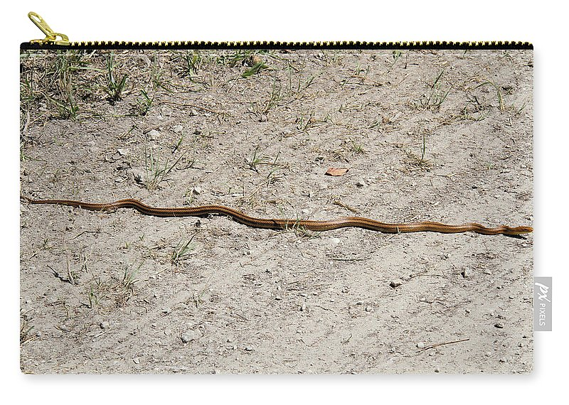 Yellow Rat Snake Carry-all Pouch featuring the photograph Yellow Rat Snake by Doris Potter