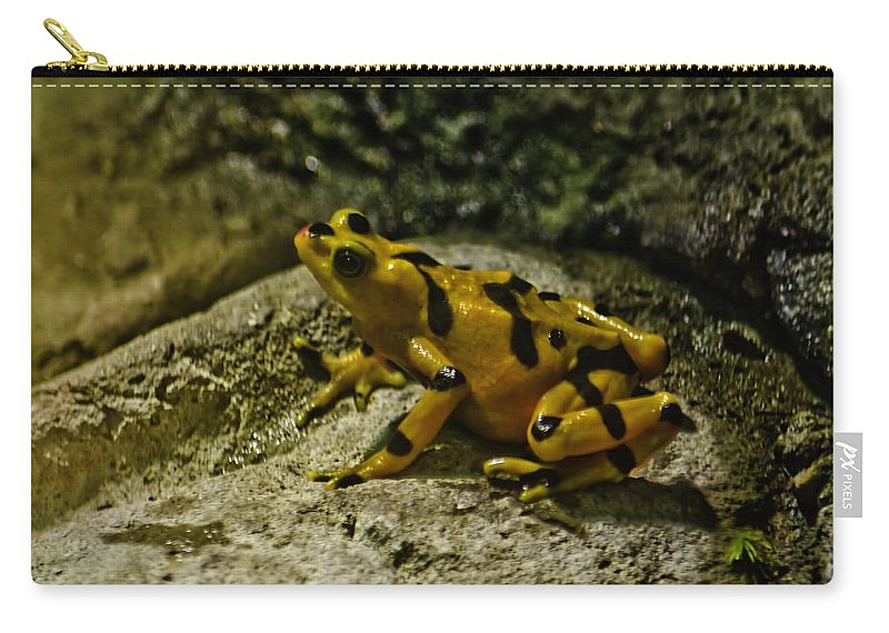 Usa Carry-all Pouch featuring the photograph Yellow Rock Jumper by LeeAnn McLaneGoetz McLaneGoetzStudioLLCcom
