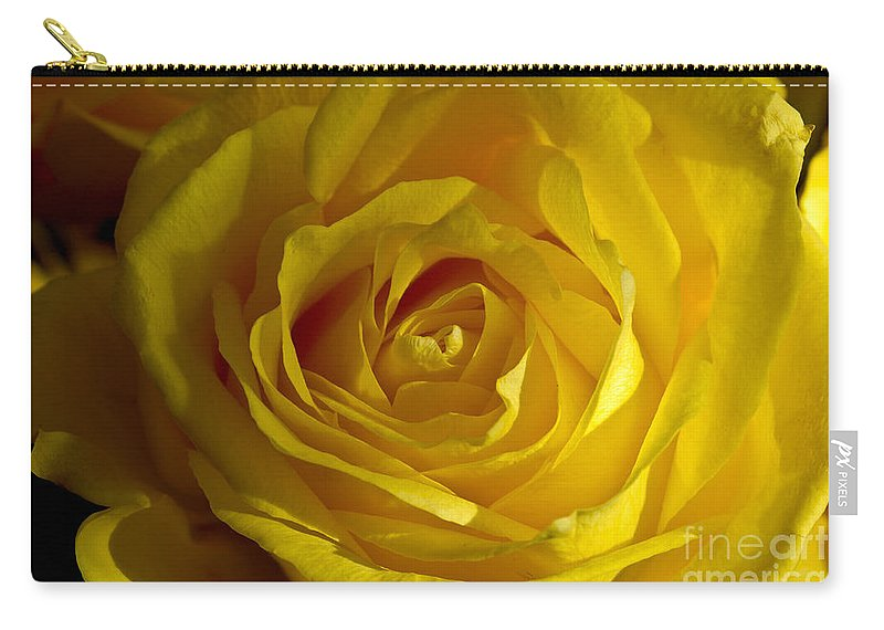 Yellow Carry-all Pouch featuring the photograph Yellow Rose by Anthony Sacco