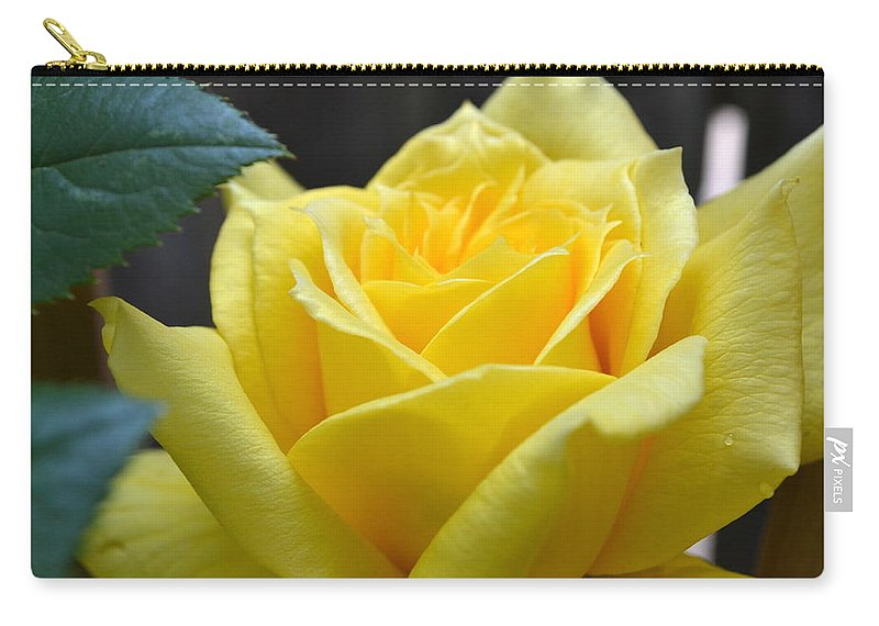 Rose Carry-all Pouch featuring the photograph Yellow Rose Ll by Michelle Calkins