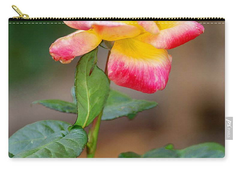 Yellow Rose Carry-all Pouch featuring the photograph Yellow Rose by Optical Playground By MP Ray