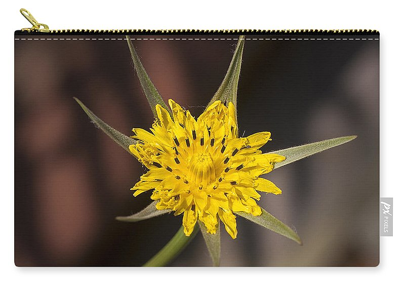 Yellow Carry-all Pouch featuring the photograph Yellow Star Flower by Richard Thomas