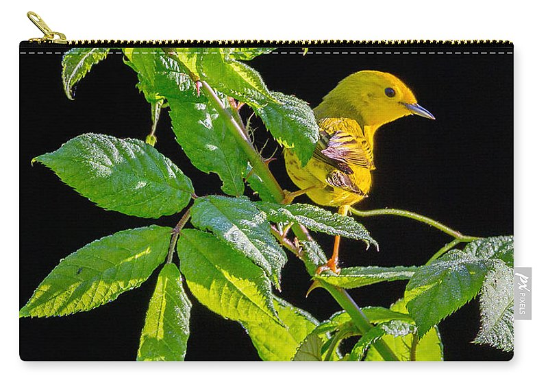 Warbler Carry-all Pouch featuring the photograph Yellow Warbler by Bill Wakeley