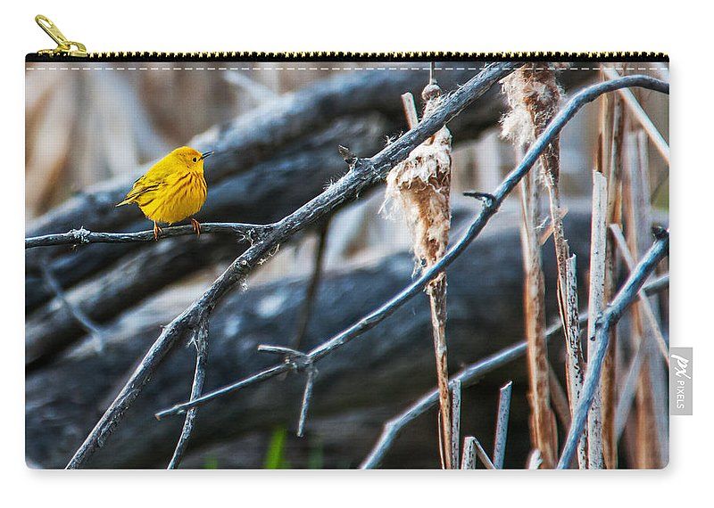 Wildlife Carry-all Pouch featuring the photograph Yellow Warbler by Edward Peterson