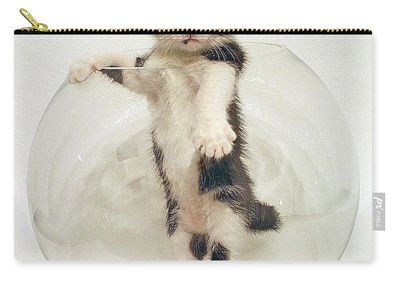 Yin Yang Kitten Carry-all Pouch featuring the photograph Yin Yang Kitten by Olivia Novak