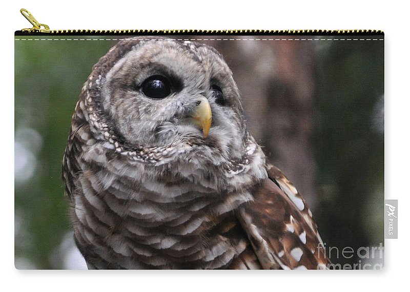 Owl Carry-all Pouch featuring the photograph You Can Call Me Owl by Lydia Holly