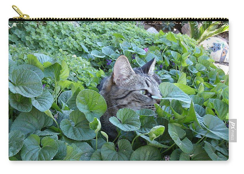 David S Reynolds Carry-all Pouch featuring the photograph You Can't See Me by David S Reynolds