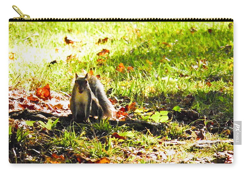 Squirrel Carry-all Pouch featuring the photograph You Talking To Me? by Nick Kirby