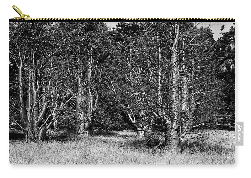 Baobab Carry-all Pouch featuring the photograph Young Baobab Trees by Douglas Barnard