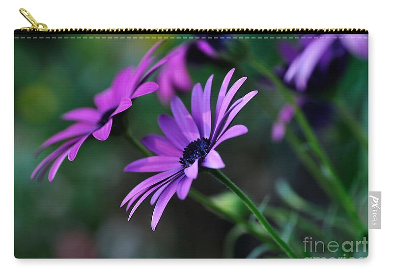 Photography Carry-all Pouch featuring the photograph Young Daisies by Kaye Menner